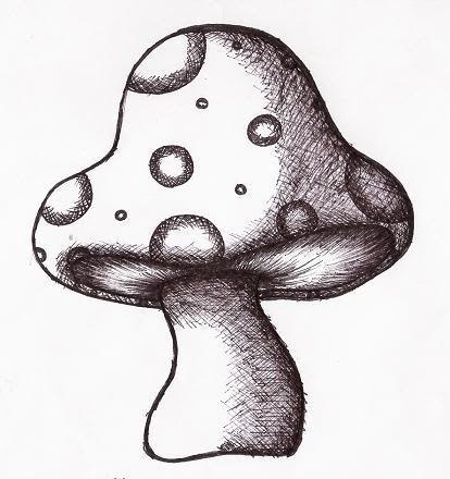 Drawn mushroom Your ideas 12 15 Backyard