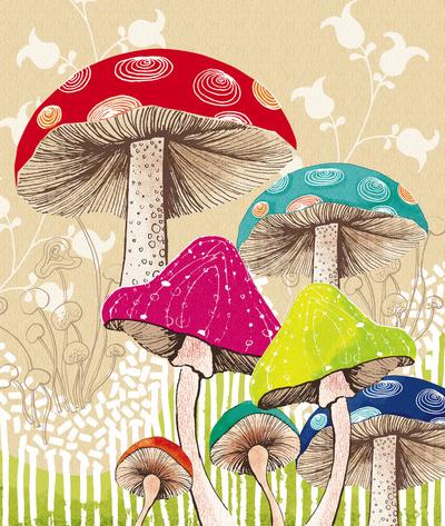 Drawn mushroom Mushroom Sketch Magical Drawings Drawings