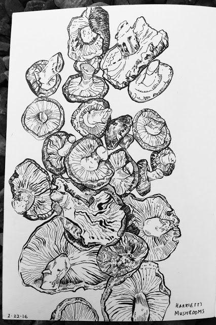 Drawn mushroom character 25+ Pentel O in Faber