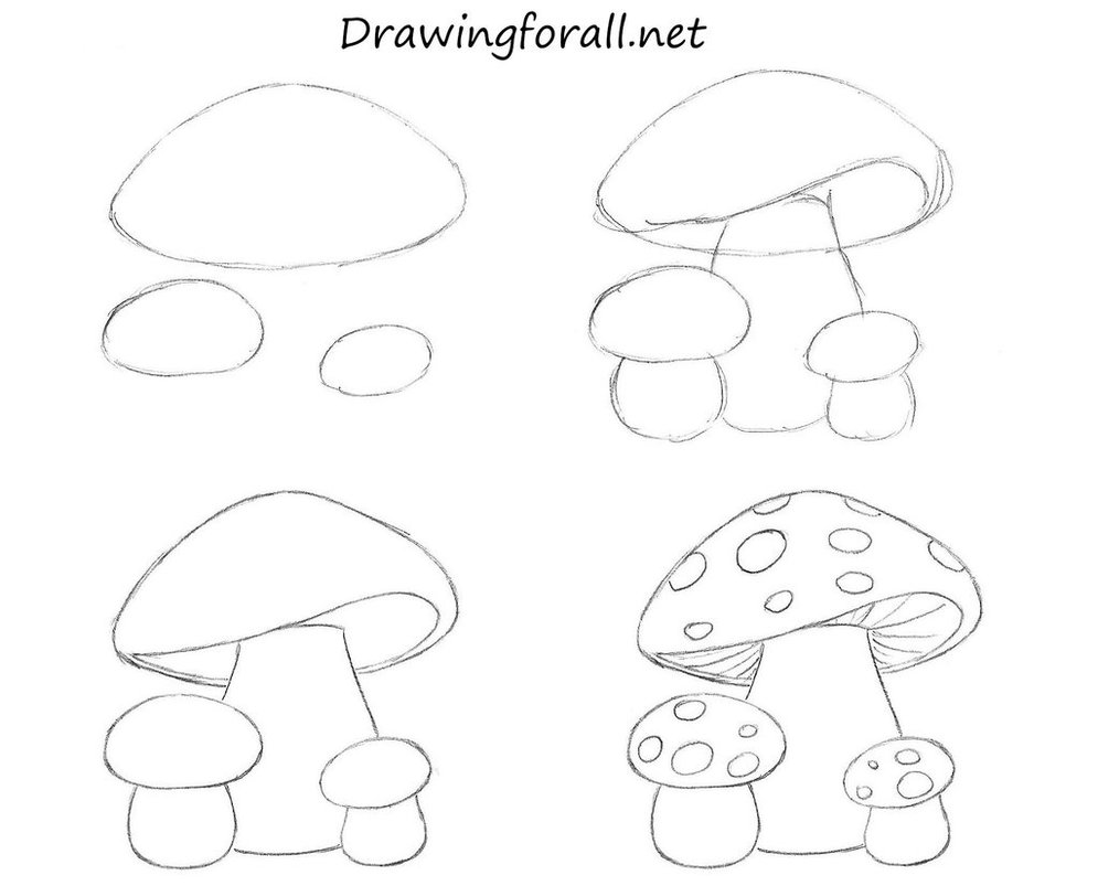 Drawn mushroom line drawing To For by Mushrooms To