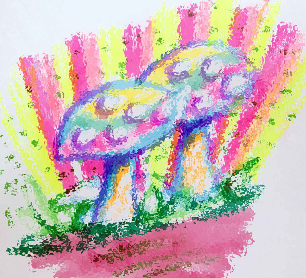 Drawn mushroom Drawings of magic The Mushrooms