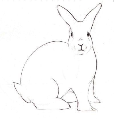 Drawn music bunny Bunny Bunny Realistic the Rabbit's