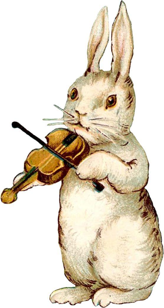 Drawn musician bunny Vintage Bunny Musical free Pinterest