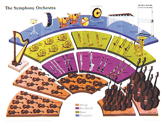 Drawn musician orchestra The SYMPHONY ORCHESTRA Instruments relative