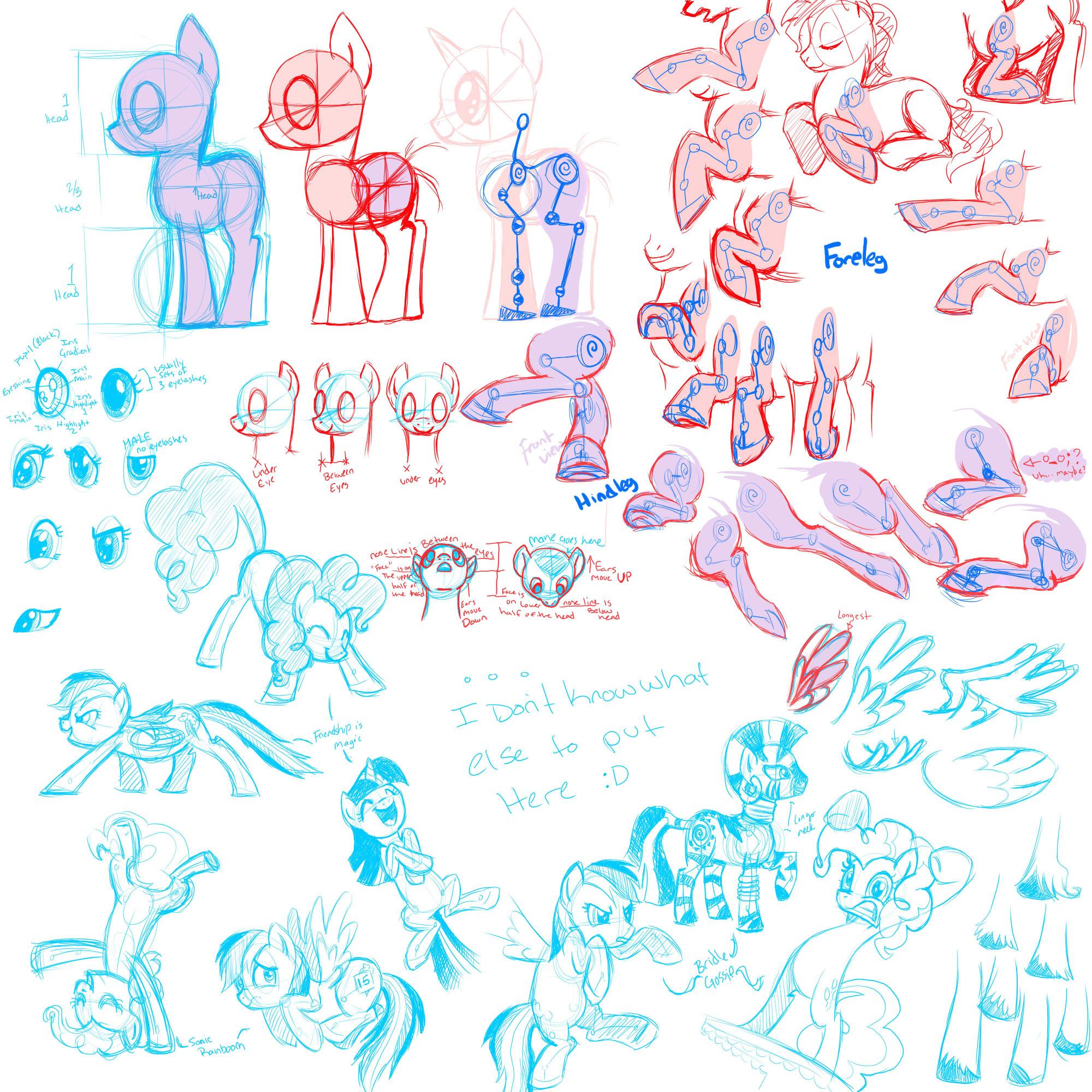 Drawn my little pony anatomy Jpg Fan  guide Pony