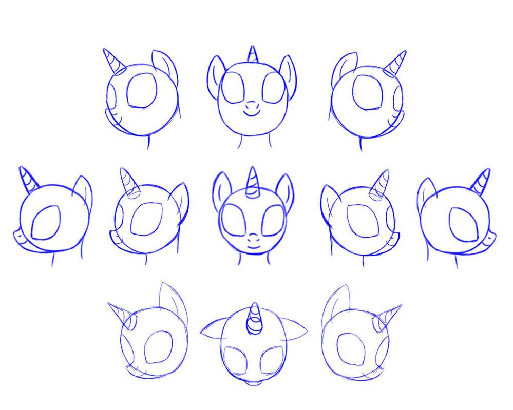Drawn my little pony anatomy Pennygu Bronies  Ponies head