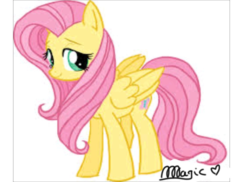 Drawn my little pony fluttershy Jpg Fluttershy Image Pony jpg