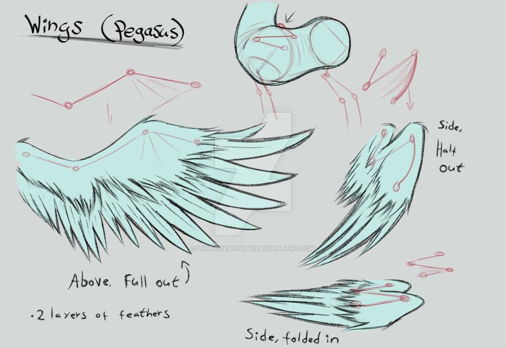 Drawn my little pony pegasus wing  sheet Wings LividCreativity LividCreativity