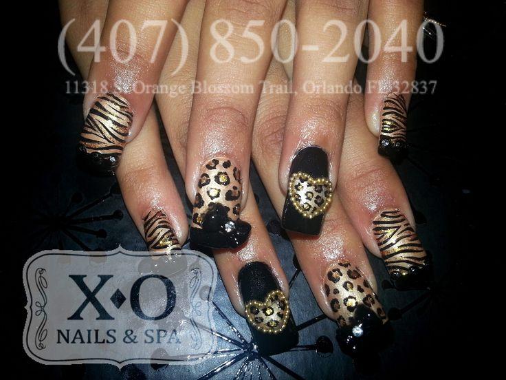 Drawn nail leopard Leopard 110 Zebra images Orlando