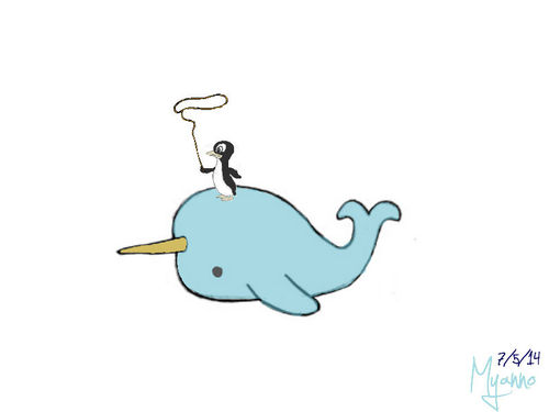 Drawn narwhal By drawing image a myanno