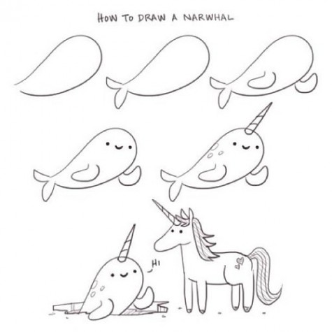 Drawn narwhal Com How narwhal Tseng How