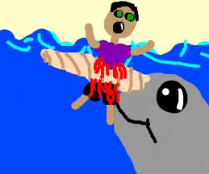 Drawn narwhal Sarahheartsyou) Man Man Narwhal impaled