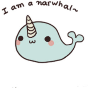 Narwhal clipart cute Polyvore Doodles dos Art Numbero