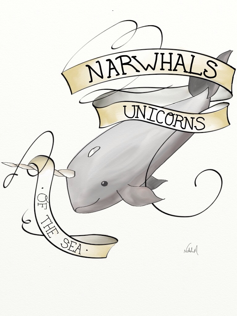Drawn trolley unicorn Daily Narwhals Drawings Narwhals Unicorns