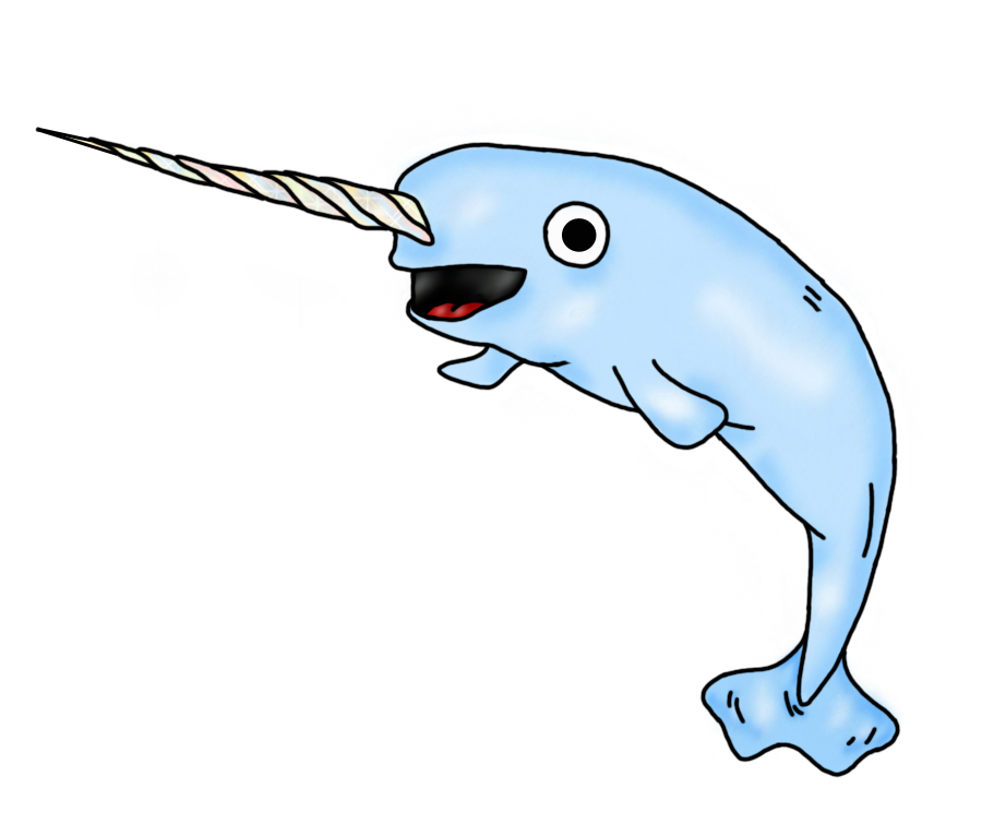 Narwhal clipart transparent #9