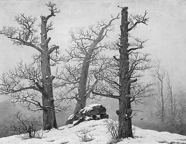 Drawn nature perspective drawing Thinkpiece Integral each 3: Friedrich