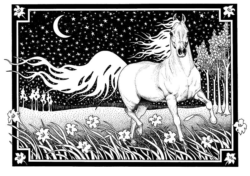 """Drawn night sky pen and ink Com Pen """" Solis Horse"""