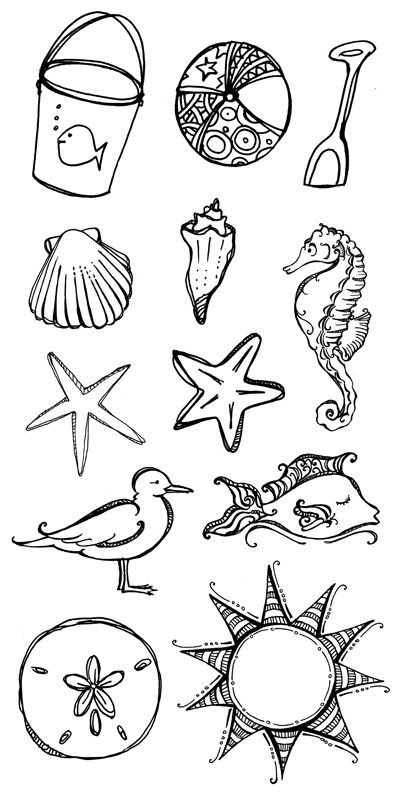 Drawn shell themed Ocean 25+ ideas drawing on