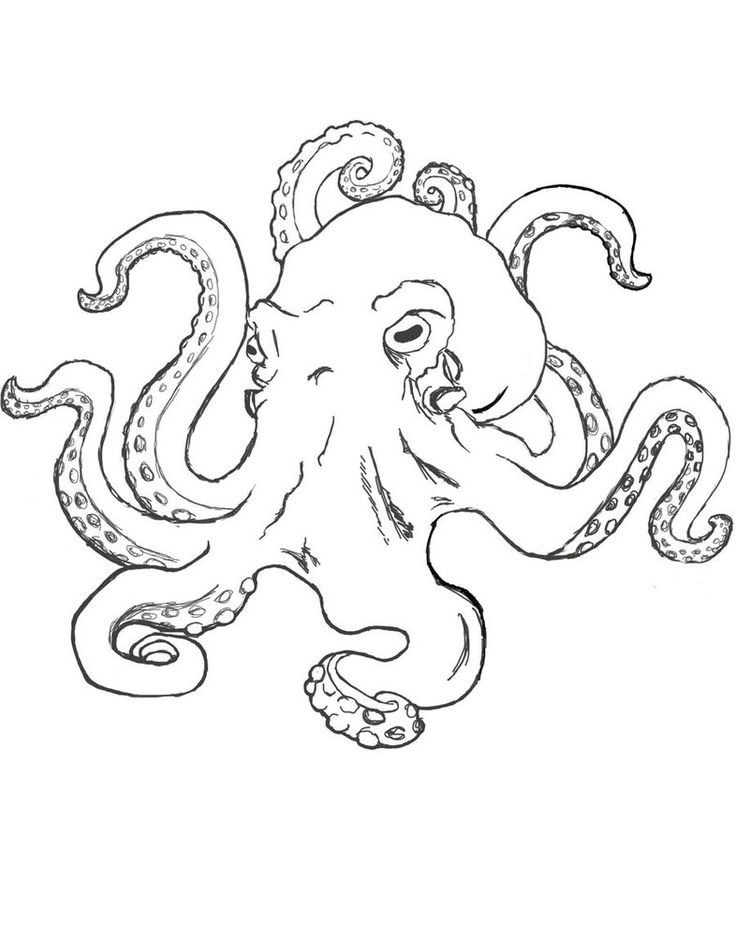 Drawn tentacle vector Google Pinterest on like Octopus