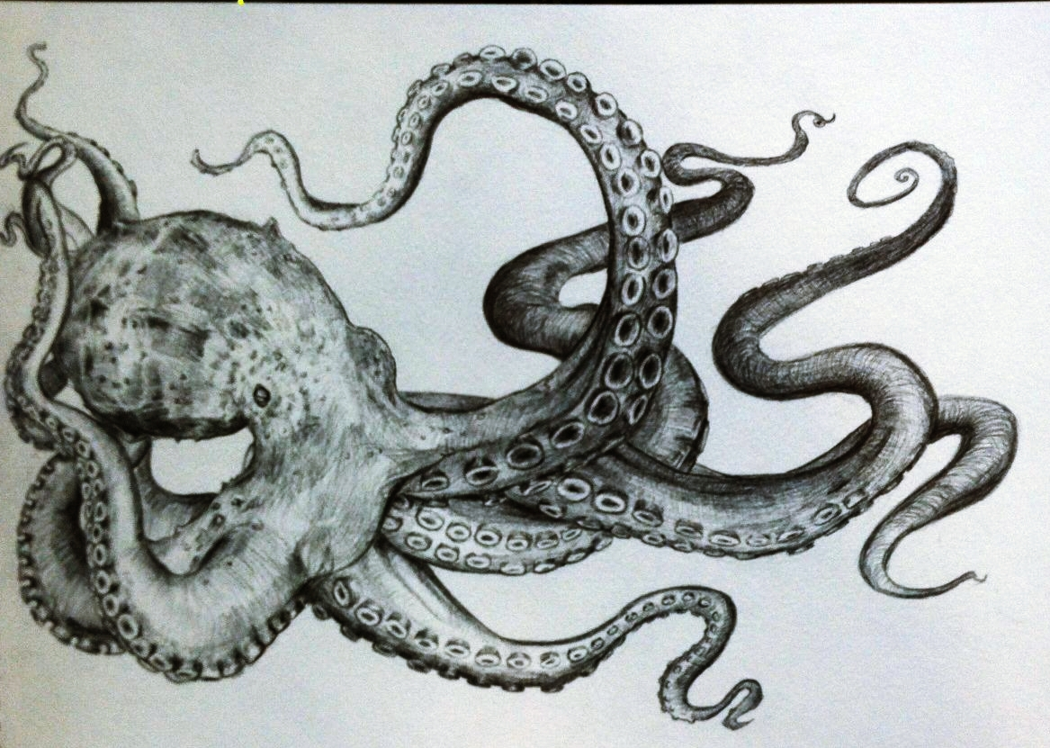 Drawn squid awesome And pencil that octopus drawing