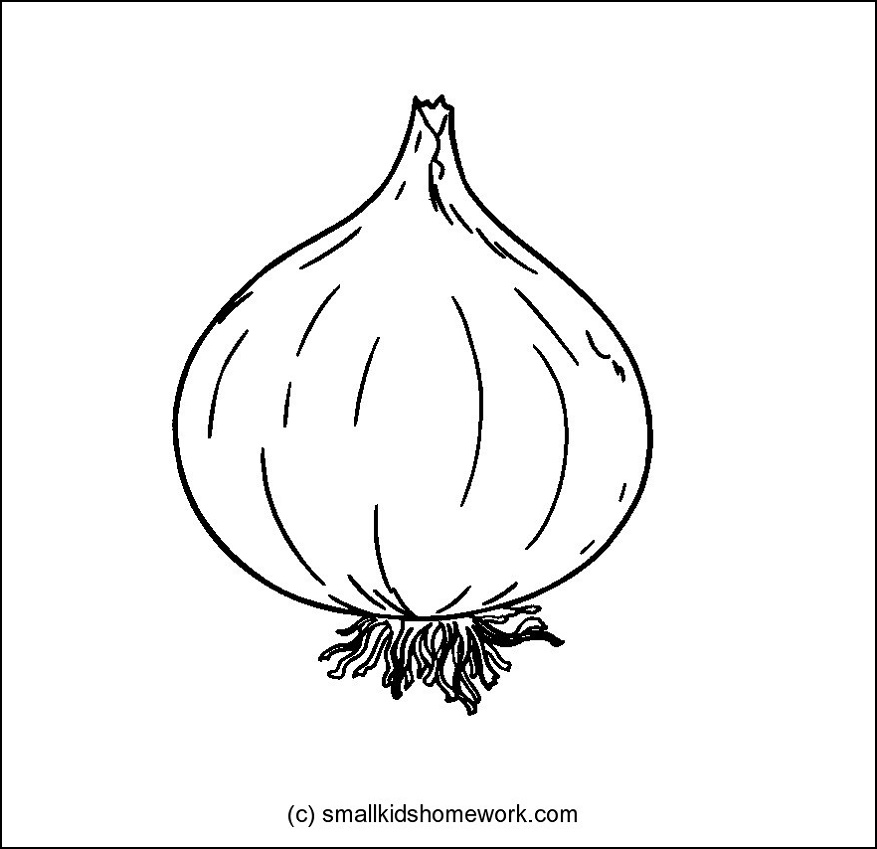 Drawn vegetable line art Coloring Pages Outline Onion Kids