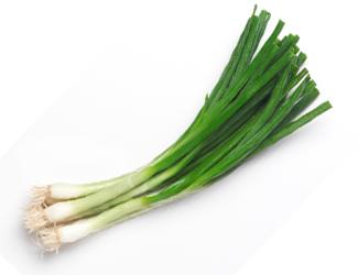Drawn onion Spring (daun bawang) scallion green