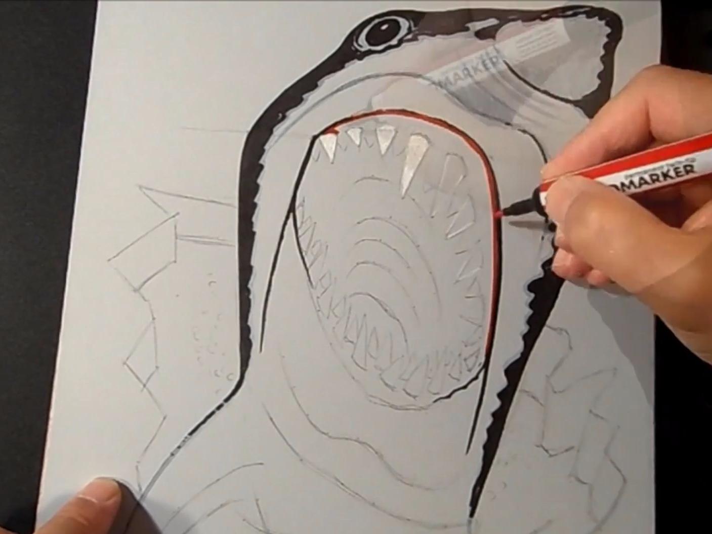 Drawn optical illusion basic Shark  Business Insider anamorphic