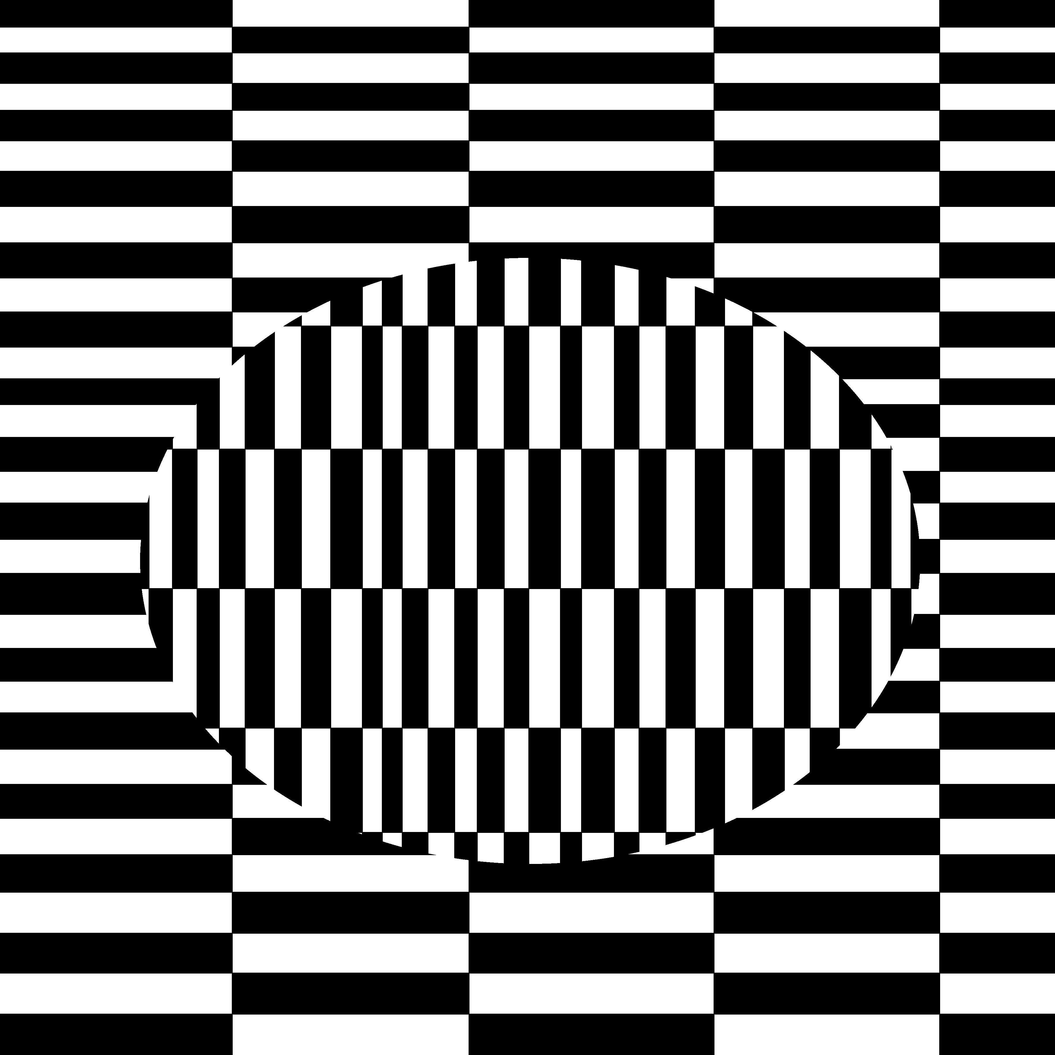 Drawn optical illusion black and white Google Search  optical white