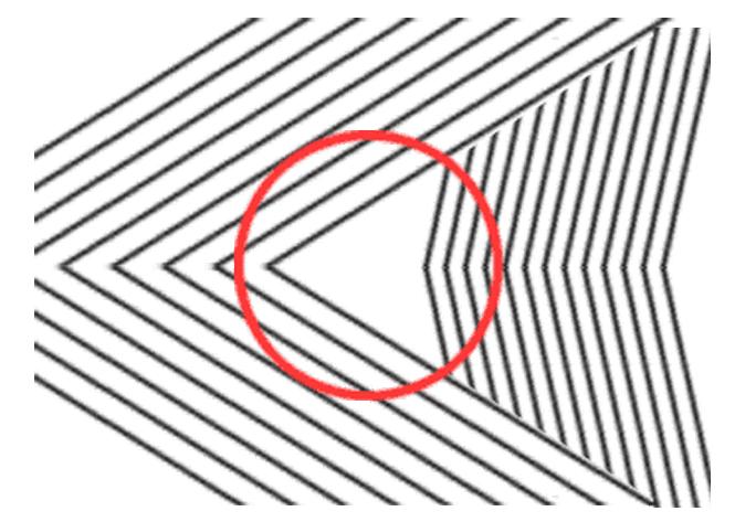 Drawn optical illusion distortion Discuss Puzzles Genius The Giant