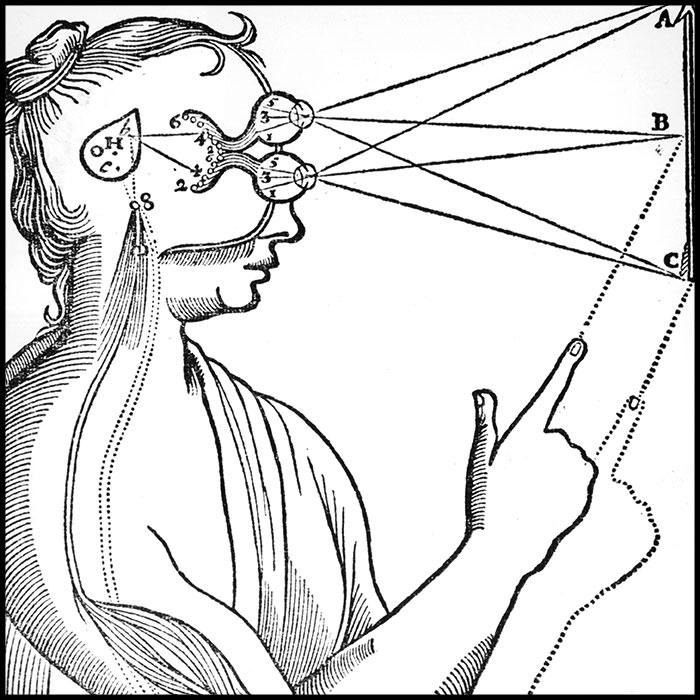 Drawn brains eye  How trick mind your