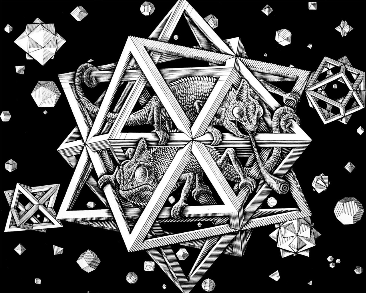 Drawn optical illusion geometric Background Animals C Illusion