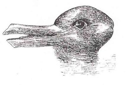 Drawn optical illusion mind bending Boggle illusions brain optical The