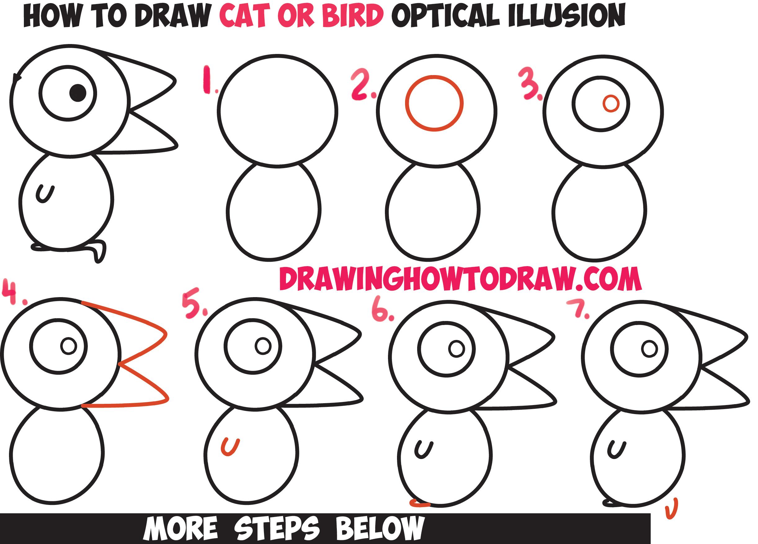 Drawn optical illusion ninja