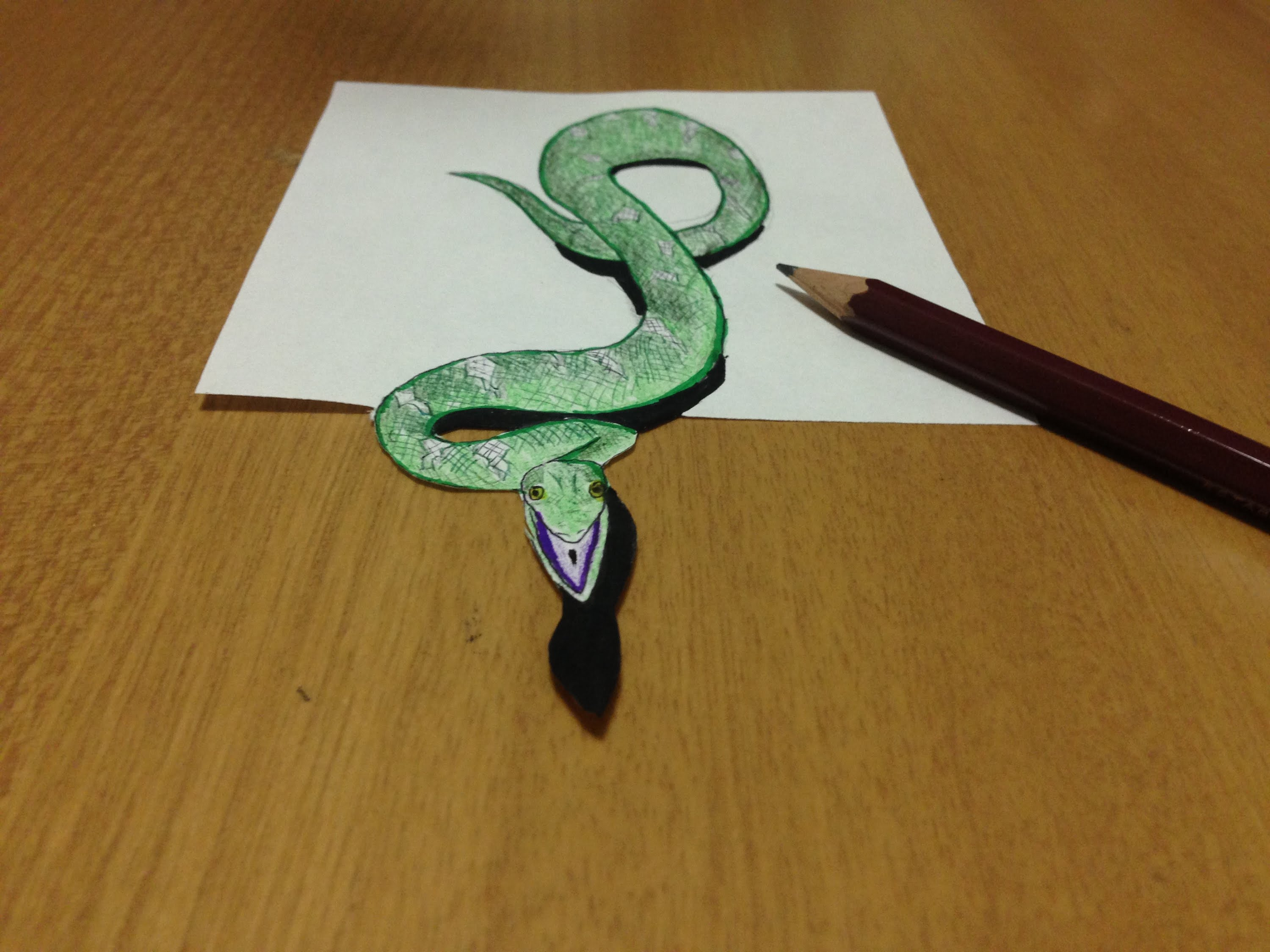 Drawn spider snake Drawing Illusion Snake 3D YouTube