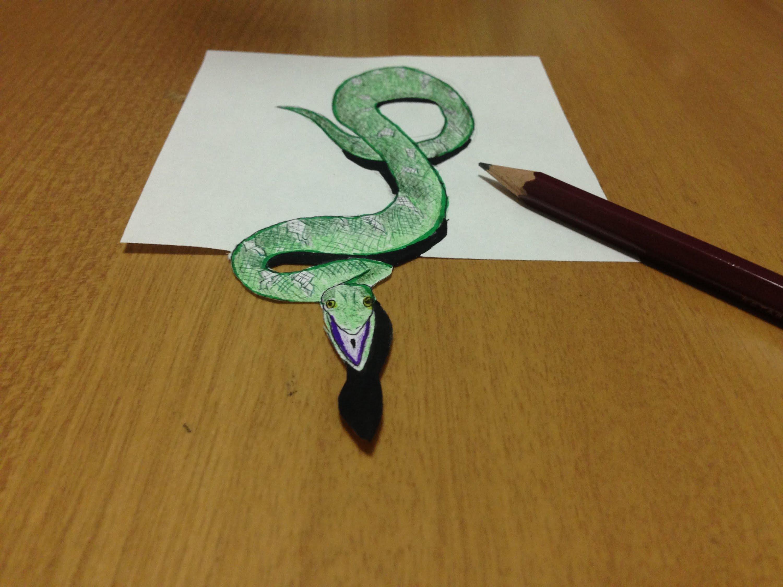 Drawn spider snake Drawing Illusion  Snake 3D