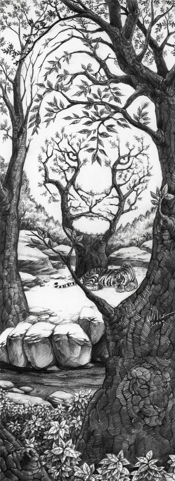 Drawn optical illusion random  its space Drawing TigerIllusion