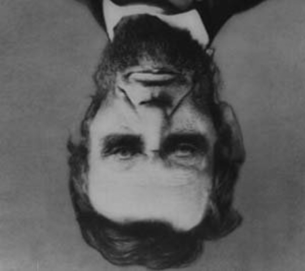 Drawn optical illusion random Test Mind and illusions down
