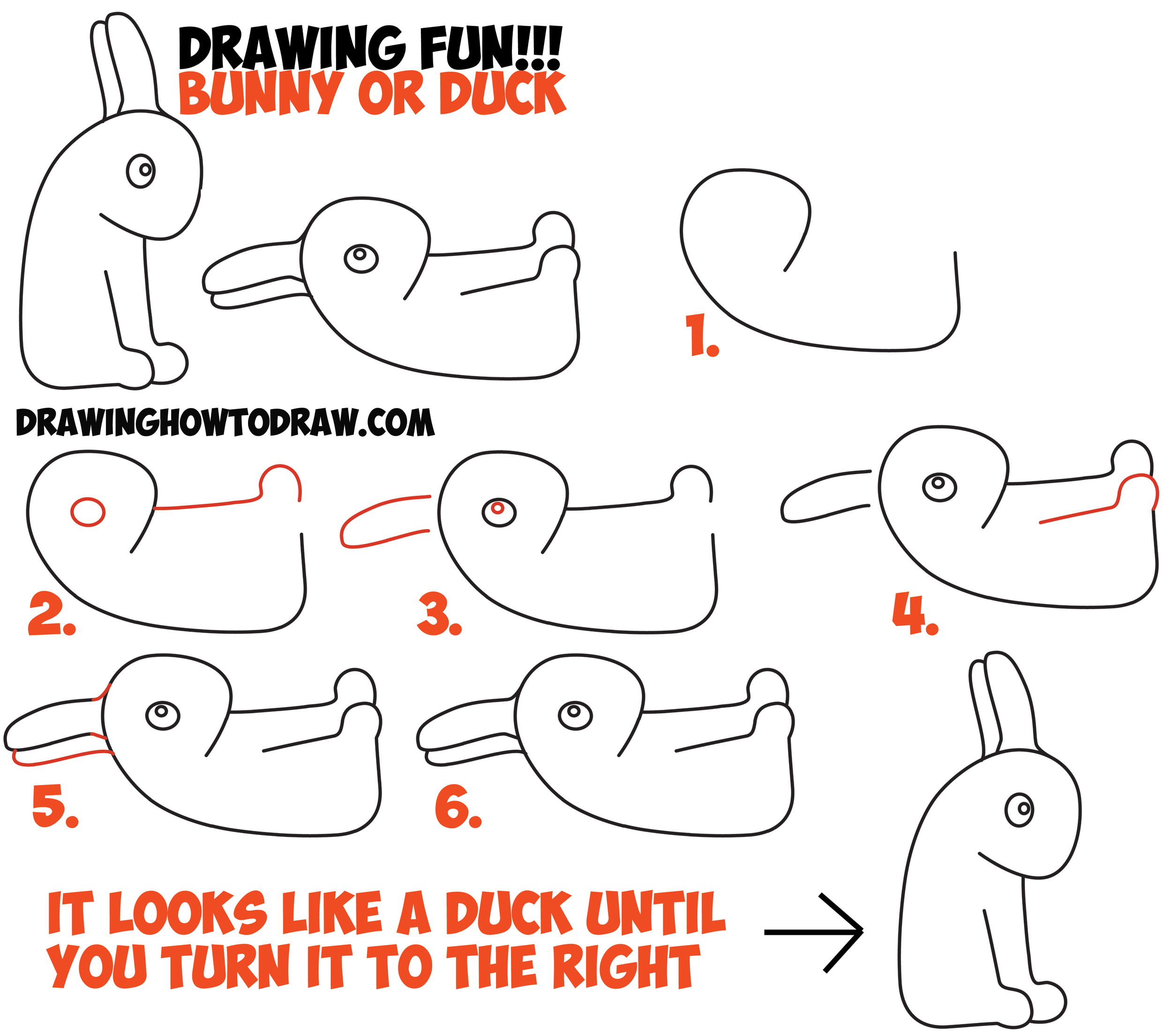 Drawn optical illusion step by step Drawing  Duck Optical an