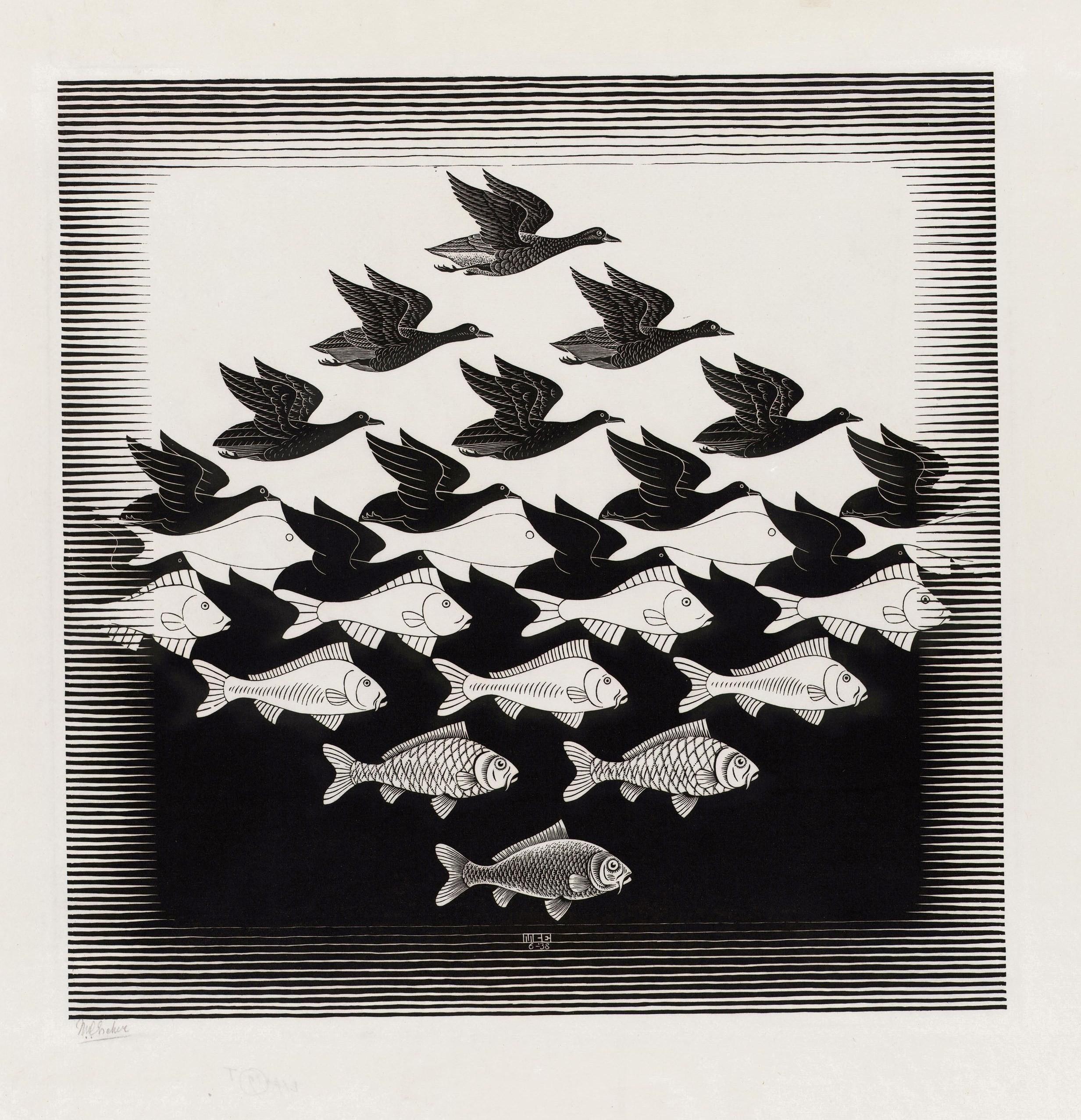 Drawn optical illusion wallpaper Animals illusion artwork M #drawing