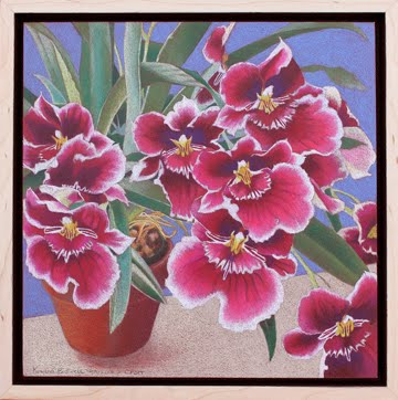 Drawn orchid colour pencil Krylon Drawing Orchid to and