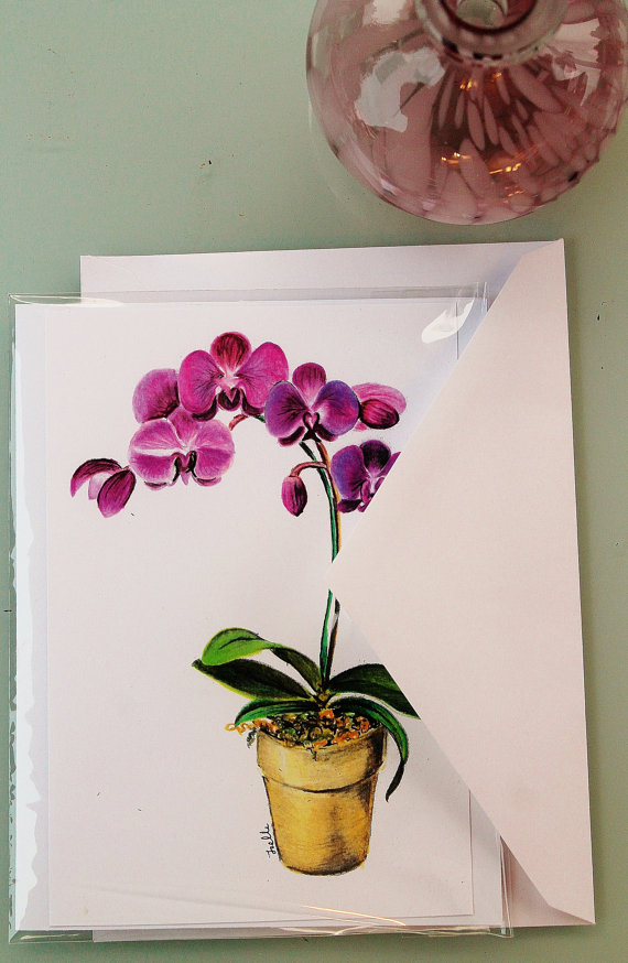 Drawn orchid colour pencil Art Blank Drawing Beautiful or