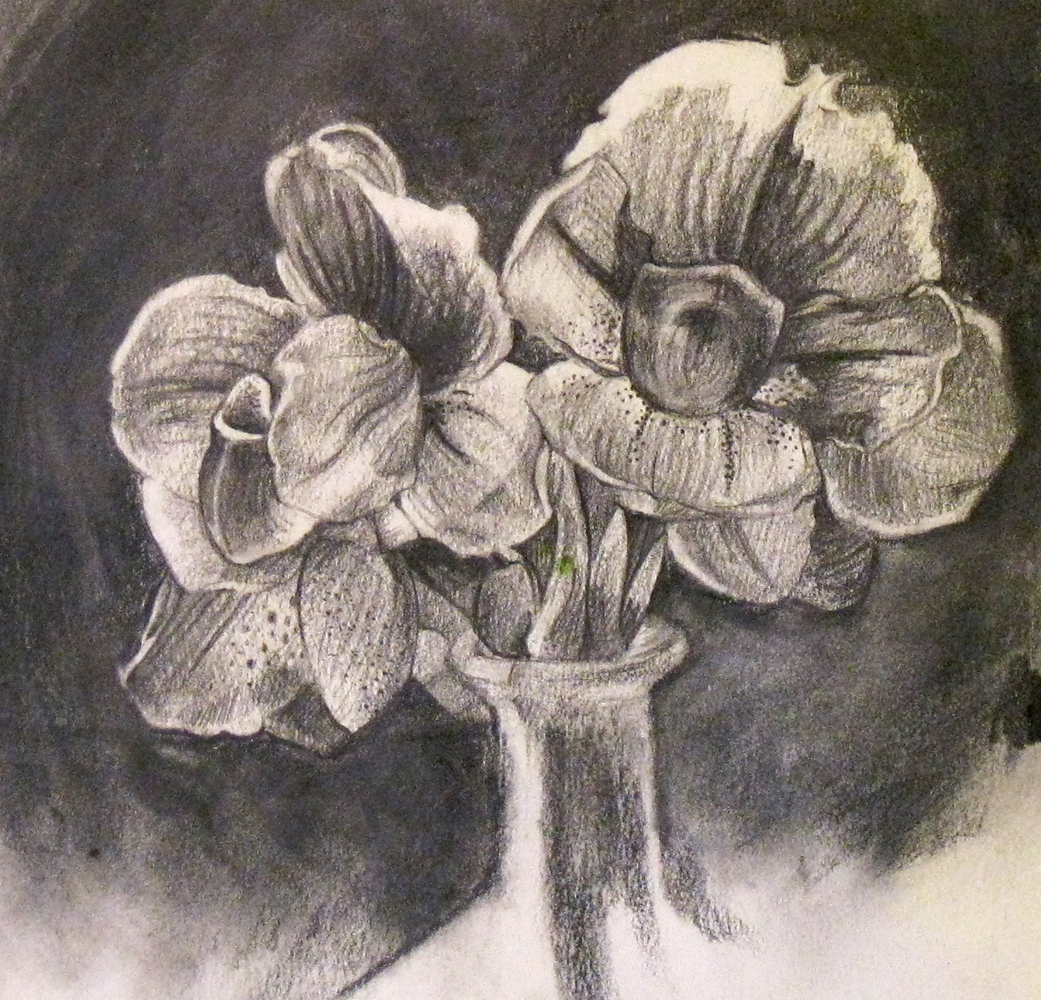 Drawn orchid graphite Orchids Yurkovich S » sketch