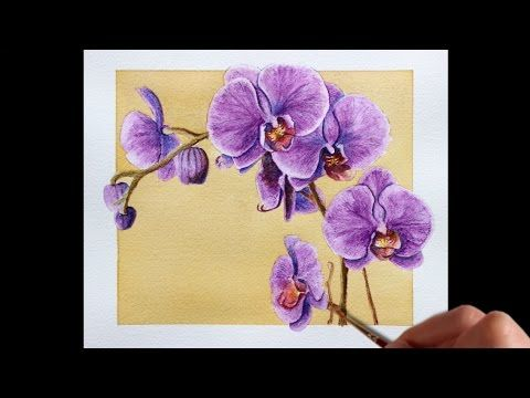 Drawn orchid pencil crayon Flowers to 25+ Pinterest Watercolor