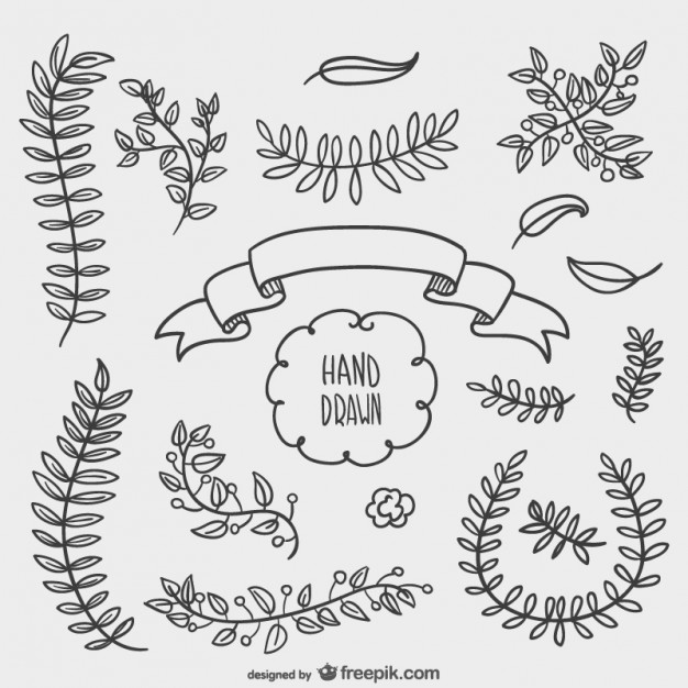 Drawn ornamental leaf Hand Pinterest elements drawn elements