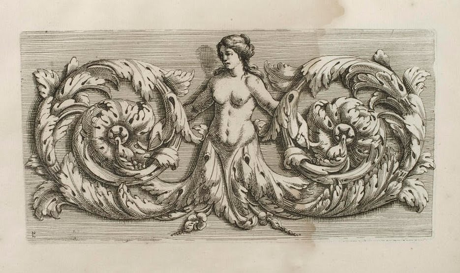 Drawn ornamental drawing Surface jpg 01_21 Acanthus draw