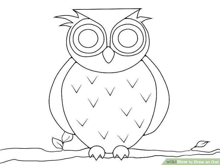 Drawn owlet (with to Owl Draw Pictures)