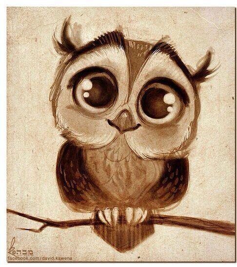 Drawn owlet #8