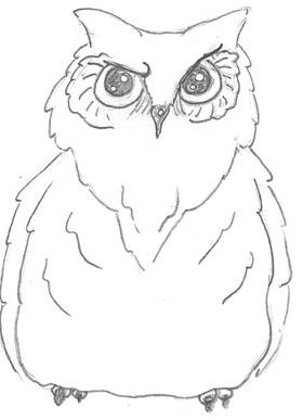 Drawn owlet #9