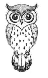 Drawn owlet #4