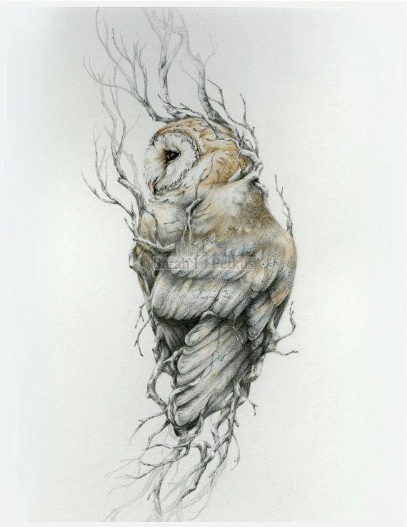 Drawn owl barn owl Barn drawing x Owl art